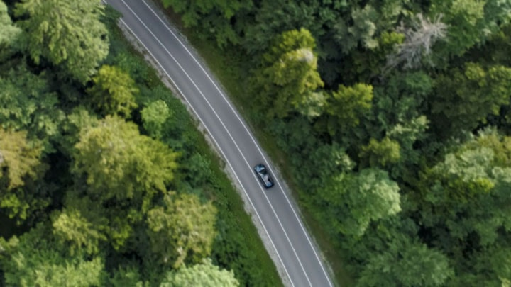 Aerial-view-of-car-in-woods